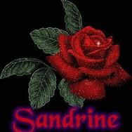 sandrine-du-62140